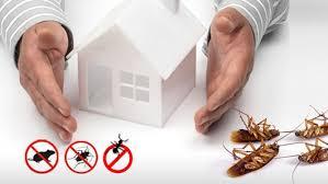 Organic Pest Control Services