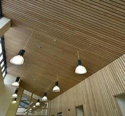 Hunter Douglas Ceiling