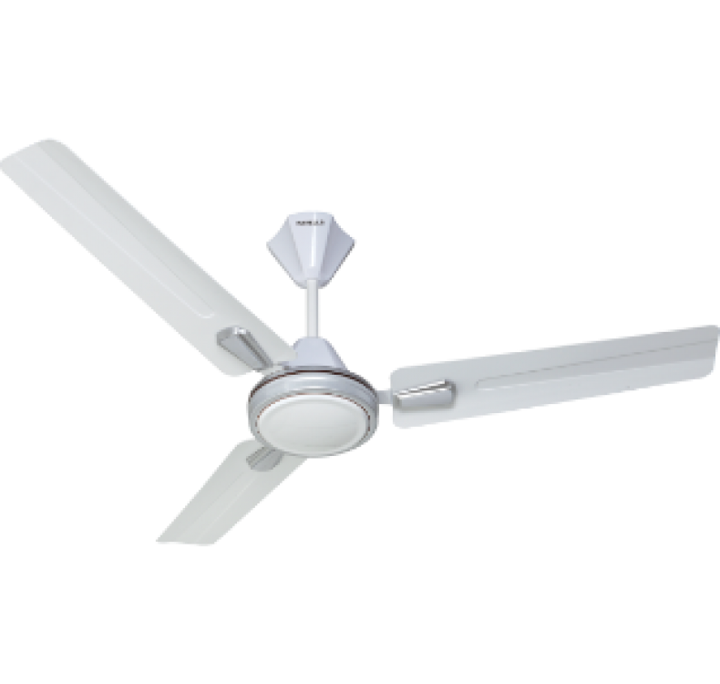 Decorative Elegant White Silver Fan