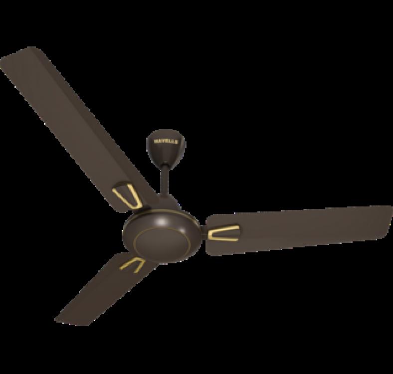 Decorative Pearl Brown  Fan