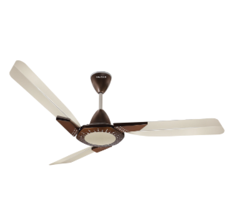 Decorative  Misty Honey Fan