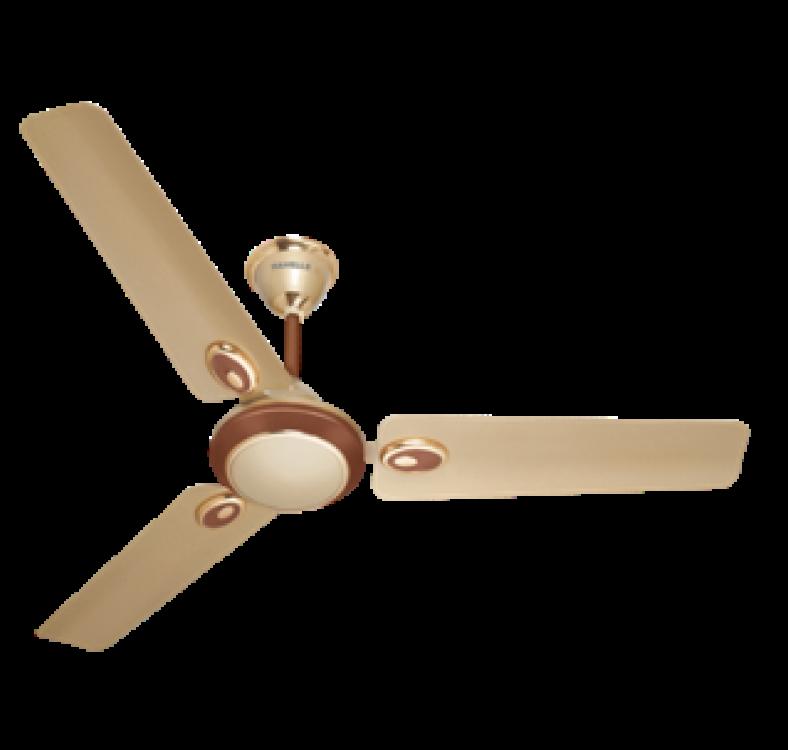 Decorative Beige-Brown Fan