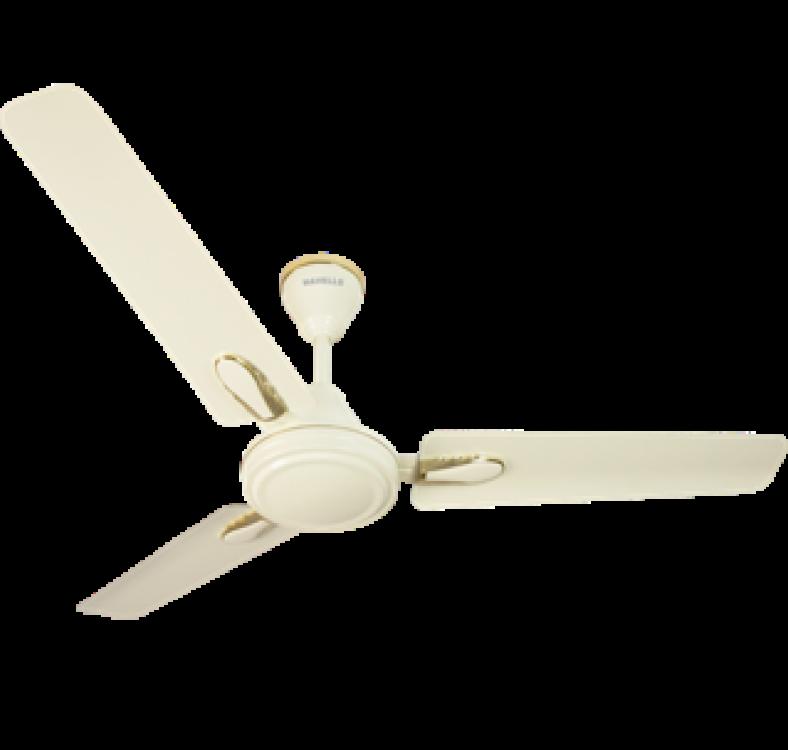 Decorative  sweep Ivory Fan