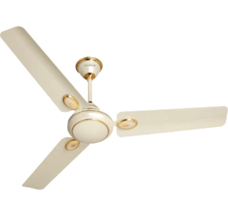 Decorative sweep Pearl Ivory Gold Fan