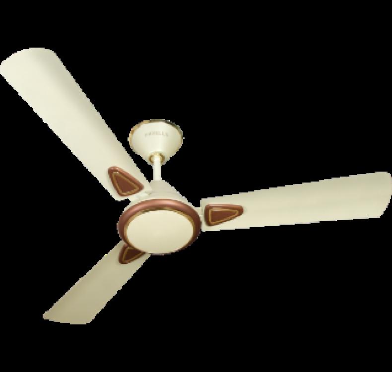 Decorative Ivory-Brown Fan