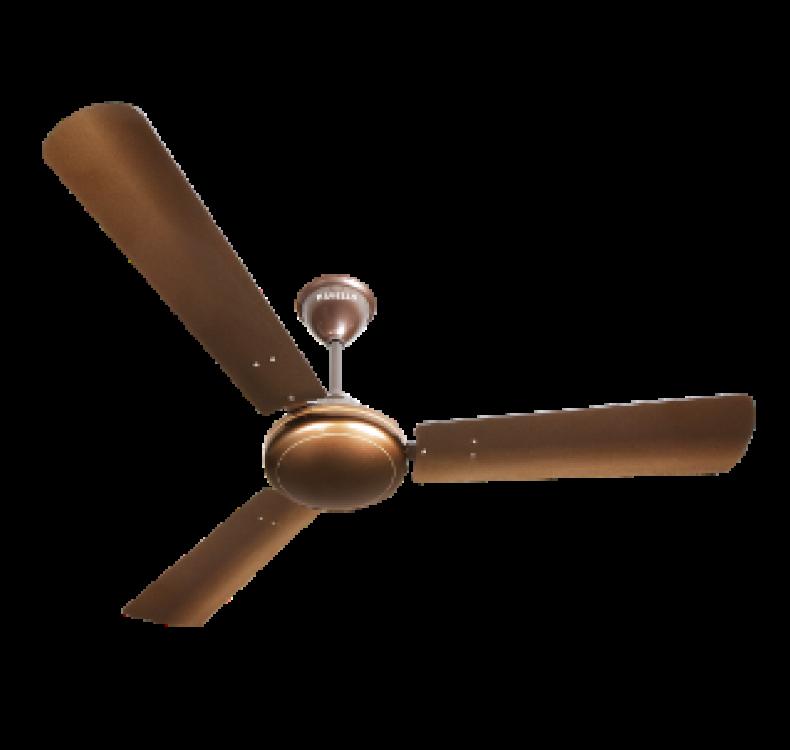 Regular Sparkle Brown   Fan