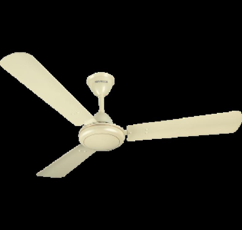 Regular Pearl Ivory-Gold Fan