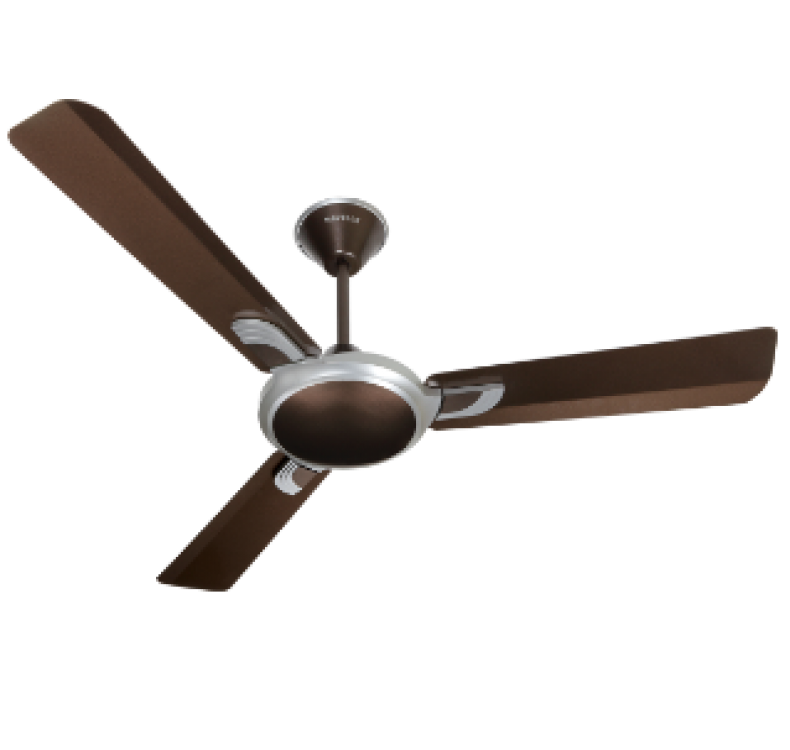 Decorative AREOLE 50 PEARL BROWN  Fan