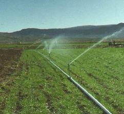 Water Supply & Irrigation Survey