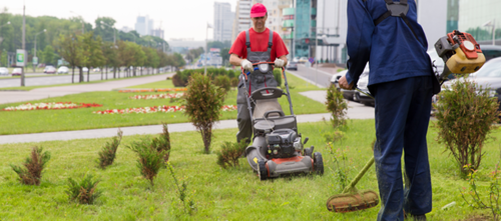 Commercial Gardening Services