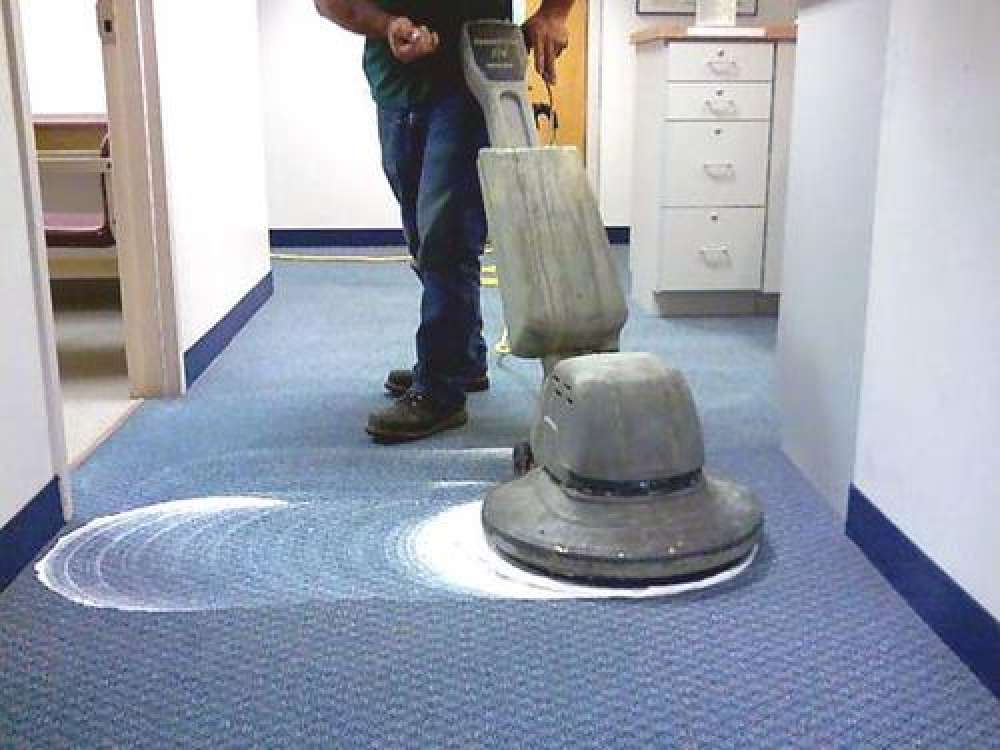Carpet Shampooing Services.