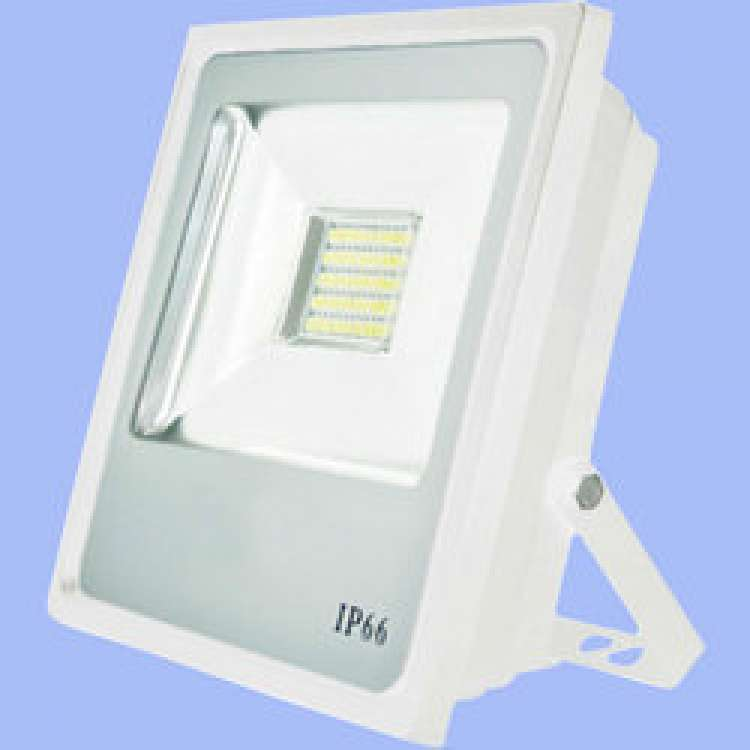 10W LED Flood Lights