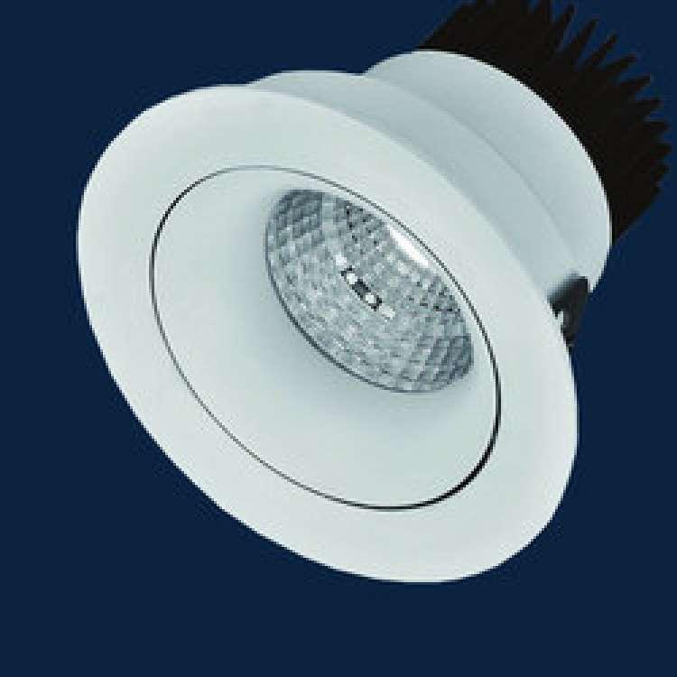 24W LED COB Light