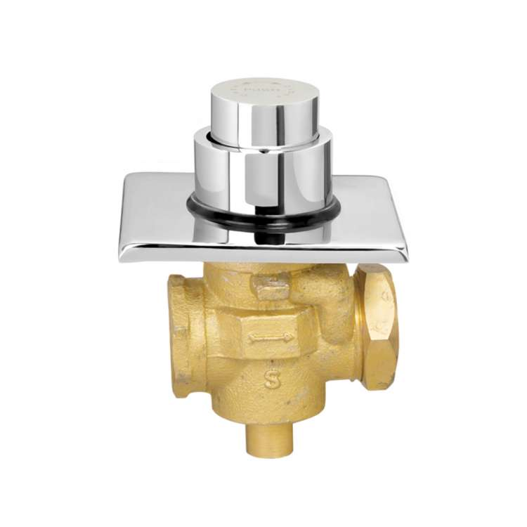 Flush valve push type single flow
