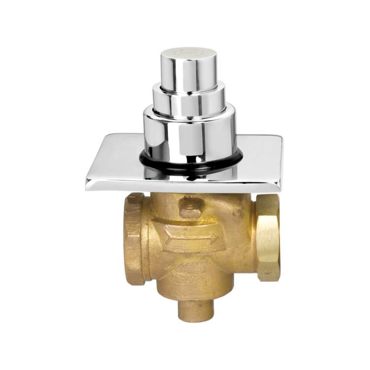 Flush valve push type dual flush