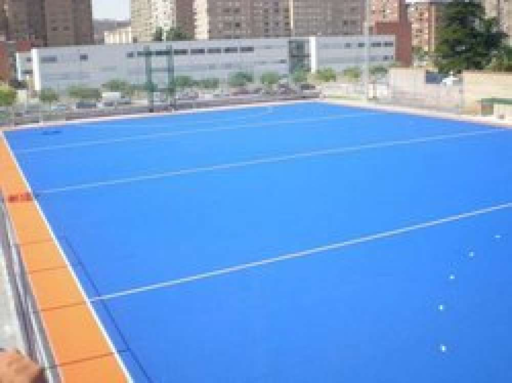 Sports Ground Turf