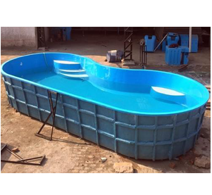 10 x 50 Readymade Swimming Pools