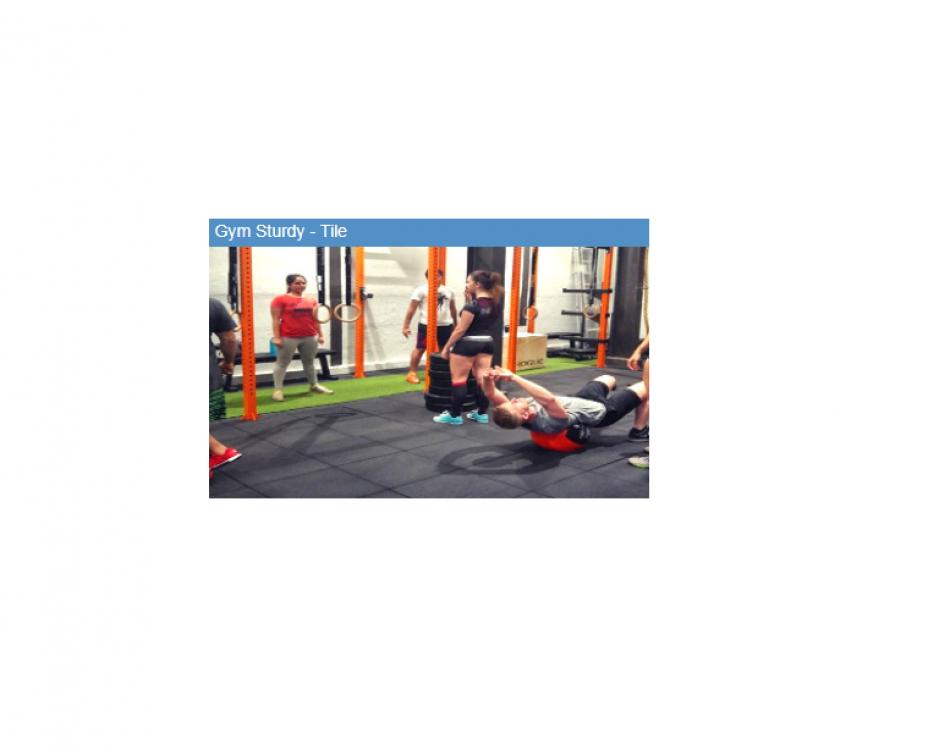 Gym Sturdy  Tile