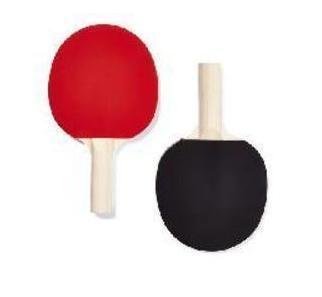 Standard Table Tennis set