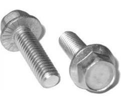 Serrated Flange Screw