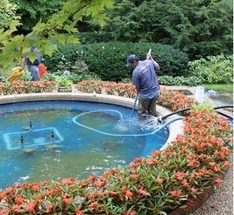 Water Fountain Repairing Service